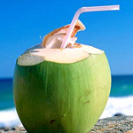 Coconut Smoothies