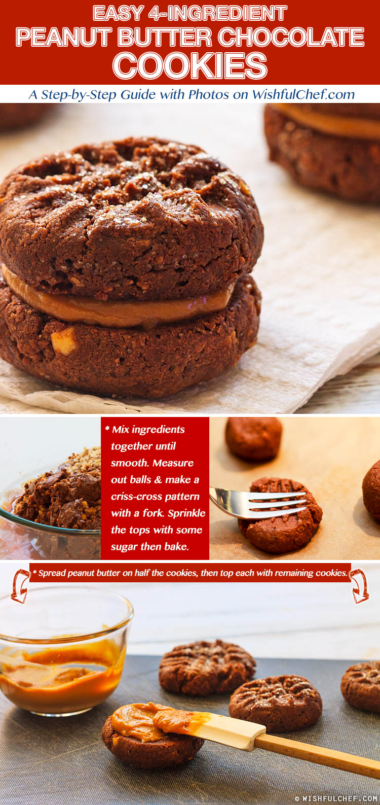 PB Chocolate Cookies